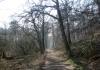 alpen_-_von_alpen_in_die_leucht_6974