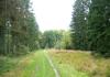 anloo_-_anlooerdiepje_en_landgoed_ter_borgh_9728