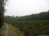 Barchem: Lochemerberg