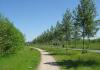 Benthuizen_-_Ronde_Driehoek_1183
