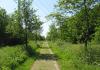 Benthuizen_-_Ronde_Driehoek_1189
