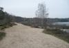 Bergen_-_Rondje_Reindersmeer_0532
