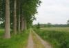 best_-_boxtel_-_het_groene_woud_9632