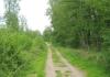 best_-_boxtel_-_het_groene_woud_9634