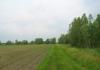 best_-_boxtel_-_het_groene_woud_9643