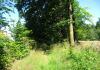 Bleiwasche_-_Schneidige_Wanderroute_in_Bad_Wunnenberg_9879
