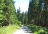 Bleiwasche_-_Schneidige_Wanderroute_in_Bad_Wunnenberg_9881
