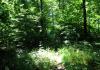 Bleiwasche_-_Schneidige_Wanderroute_in_Bad_Wunnenberg_9895