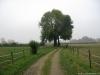 Boxmeer_Vierlingsbeek_NS_Maasheggen_3512