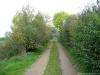Boxmeer_Vierlingsbeek_NS_Maasheggen_3520