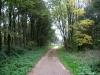 Boxmeer_Vierlingsbeek_NS_Maasheggen_3536