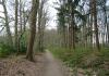 Dalfsen_-_Landgoed_De_Horte_0801