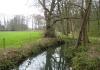 Dalfsen_-_Landgoed_De_Horte_0802