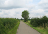 De_Steeg_-_Havikerwaard_en_Veluwezoom_1378