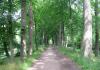 De_Steeg_-_Havikerwaard_en_Veluwezoom_1385