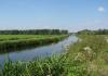 Delfgauw_-_het_Bieslandse_Bos_1536