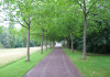 Duisburg_-_Landschaftspark_Duisburg-Nord_9945