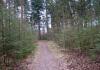 Ede_-_Planken_Wambuis_en_Zuid_Ginkel_0565