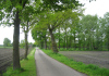 Ederveen_-_Turfvelderpad_1116