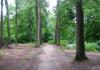 Eefde_-_Wandeling_Huis_de_Voorst_en_Huis_'t_Velde_1344