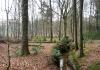 enschede_-_de_wildernis_hof_espelo_sterrenbos_en_het_lonnekermeer_6851