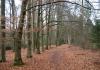 enschede_-_de_wildernis_hof_espelo_sterrenbos_en_het_lonnekermeer_6853