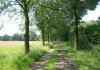 Escharen_-_Graafse_Raam_en_Tongelaar_1337