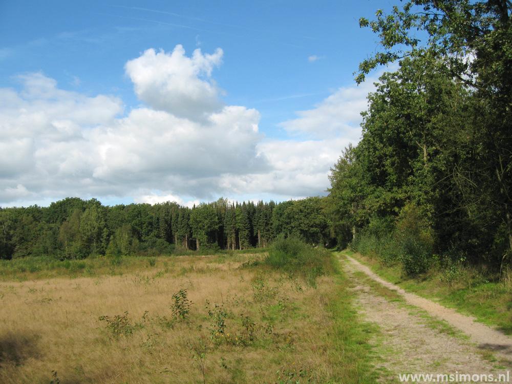 friese_woudenpad_-_boijl_-_de_hoeve_9412