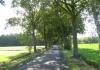 friese_woudenpad_-_boijl_-_de_hoeve_9407