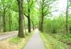 friese_woudenpad_-_boijl_-_wilhelminaoord_9344