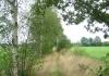 friese_woudenpad_-_boijl_-_wilhelminaoord_9346