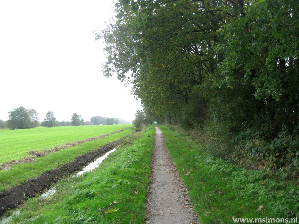 friese_woudenpad_-_ee_-_broeksterwoude_9105