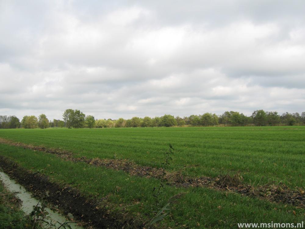 friese_woudenpad_-_ee_-_broeksterwoude_9106