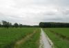 friese_woudenpad_-_hoornsterzwaag_-_boijl_9337