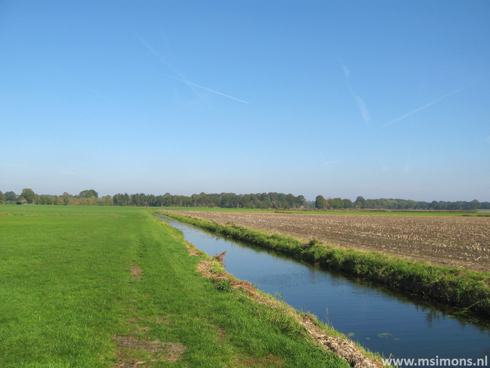 friese_woudenpad_-_oldemarkt_-_steenwijk_9425