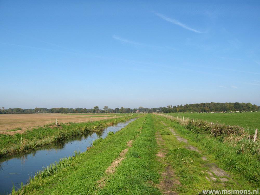 friese_woudenpad_-_oldemarkt_-_steenwijk_9426