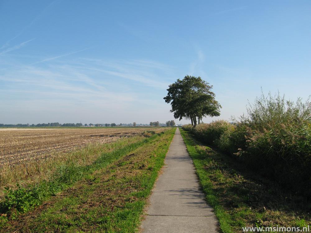 friese_woudenpad_-_oldemarkt_-_steenwijk_9427