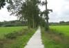 friese_woudenpad_-_ureterp_-_hoornsterzwaag_9375