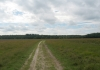 friese_woudenpad_-_ureterp_-_hoornsterzwaag_9383