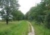 friese_woudenpad_-_ureterp_-_hoornsterzwaag_9384