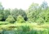 friese_woudenpad_-_wilhelminaoord_-_steenwijk_9354