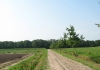 friese_woudenpad_-_wilhelminaoord_-_steenwijk_9355