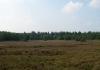 friese_woudenpad_-_wilhelminaoord_-_steenwijk_9359