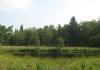 friese_woudenpad_-_wilhelminaoord_-_steenwijk_9361