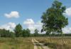 Gemeentegrens_Arnhem_-_Arnhem_Paasberg_-_Groenendaal_1517