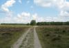 Gemeentegrens_Arnhem_-_Arnhem_Paasberg_-_Groenendaal_1523
