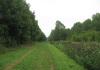 Gemeentegrens_Arnhem_-_Arnhem_Schuytgraaf_-_Arnhem_Immerloo_9986