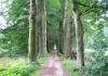 Gemeentegrens_Arnhem_-_Oosterbeek_-_Arnhem_Schuytgraaf_1241
