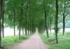 Gemeentegrens_Arnhem_-_Oosterbeek_-_Arnhem_Schuytgraaf_1243
