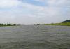 Gemeentegrens_Arnhem_-_Oosterbeek_-_Arnhem_Schuytgraaf_1262